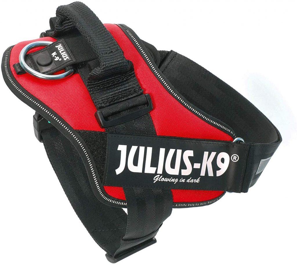 arnés para perros Julius K9 color rojo