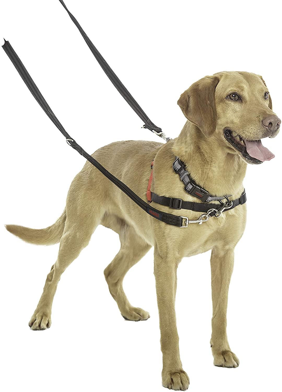 arnés para perros que tiran de la marca Halti