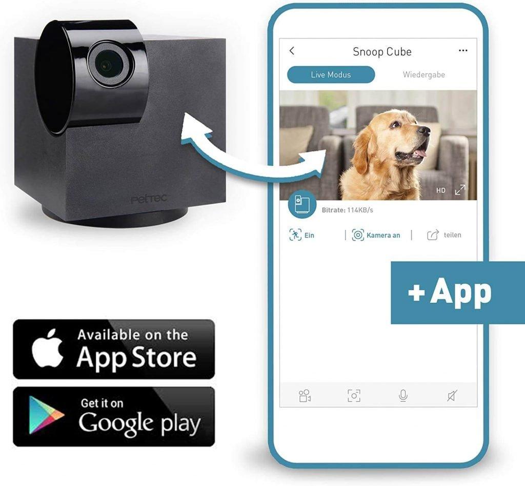 cámara de vigilancia para perros que se controla vía app