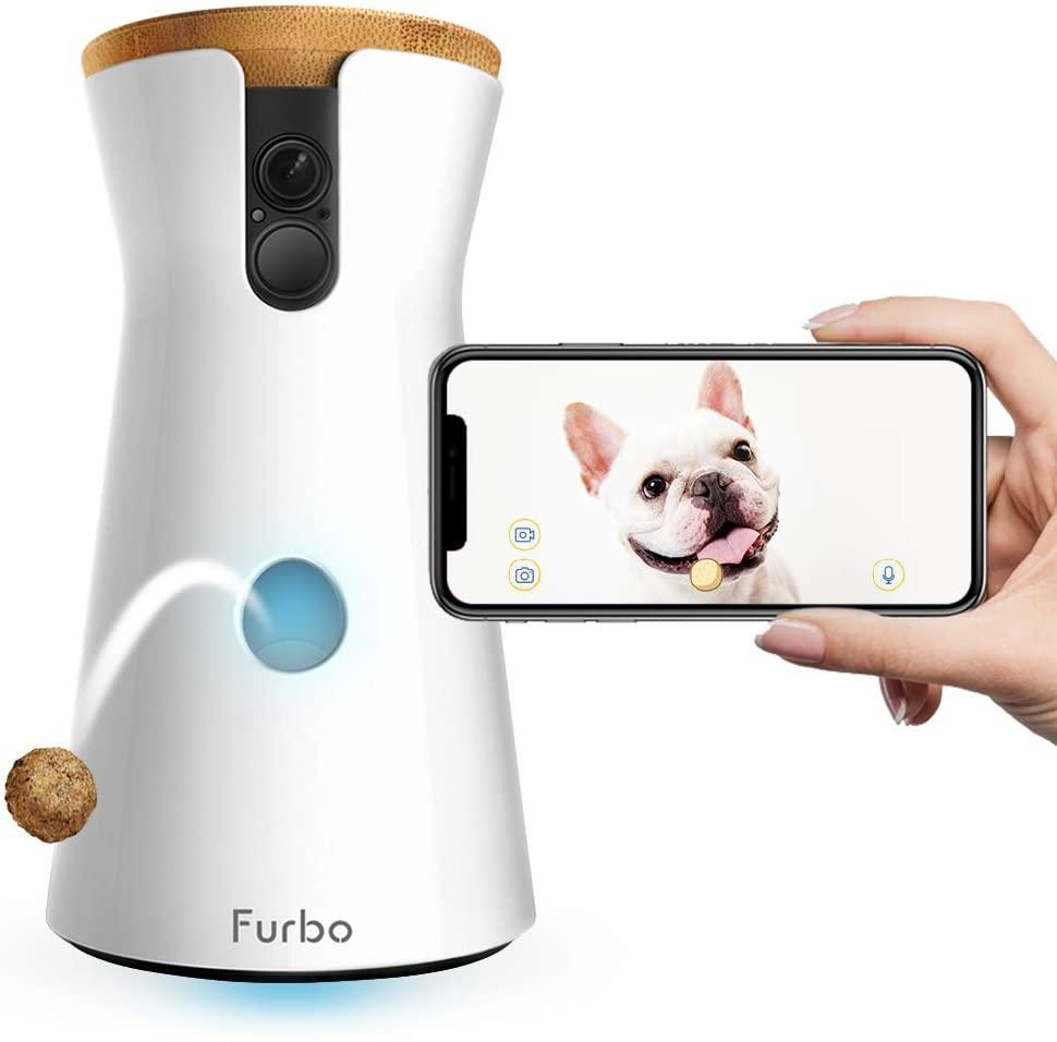 perro comiendo chuches que la cámara de vigilancia furbo le lanza