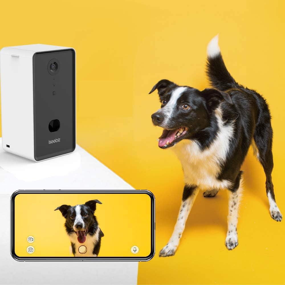 perro ladrando a la cámara de vigilancia para mascotas Iseebiz
