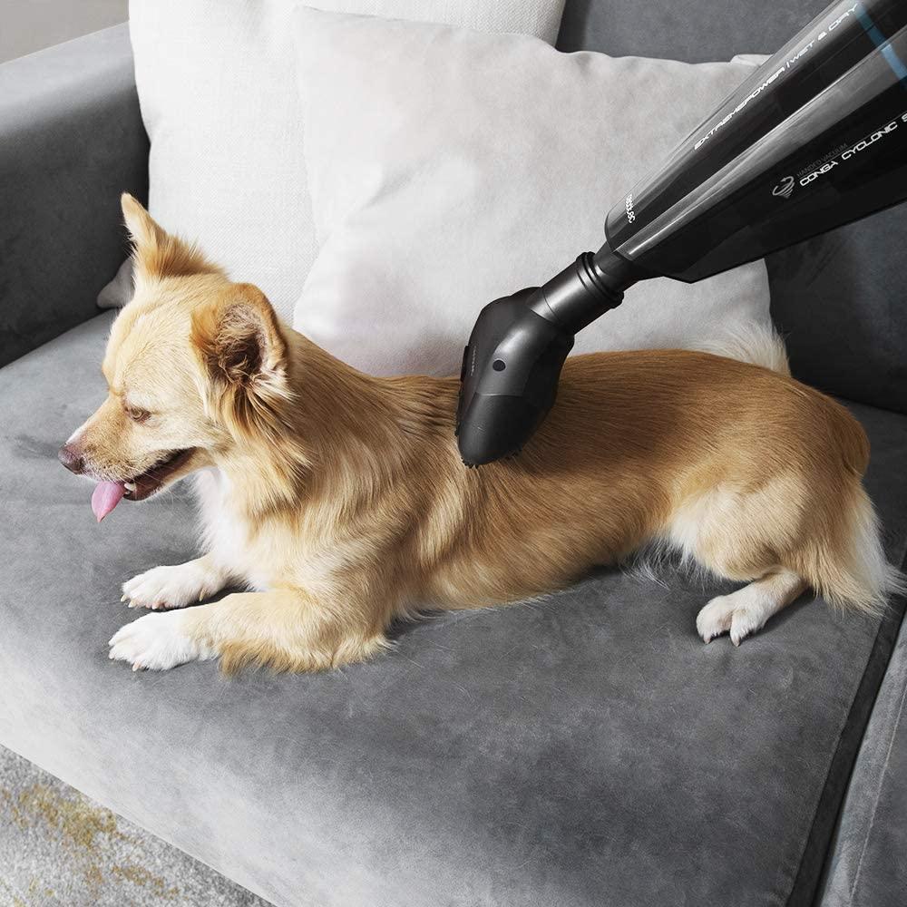 perro masajeado por el cepillo para mascotas de la aspiradora de mano Conga