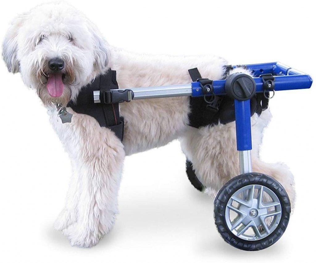 silla de ruedas para las patas traseras de los perros