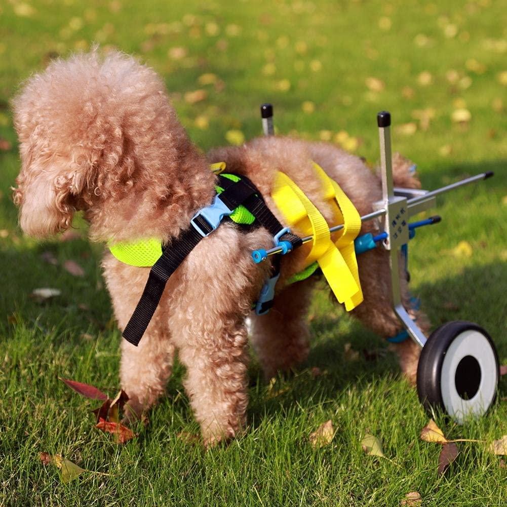 silla de ruedas para perros barata, para todos los tamaños